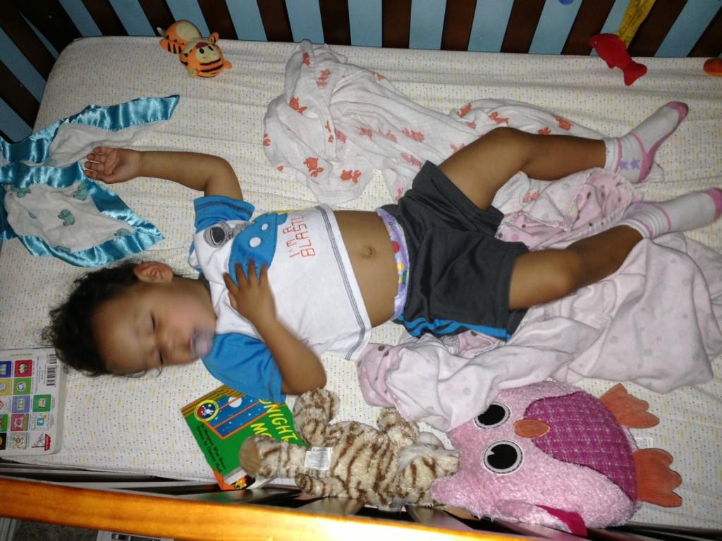 Vanessa at rest...