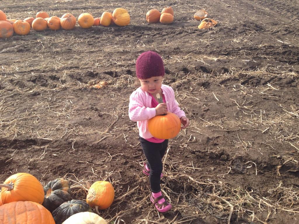 Vanessa found a pumpkin...