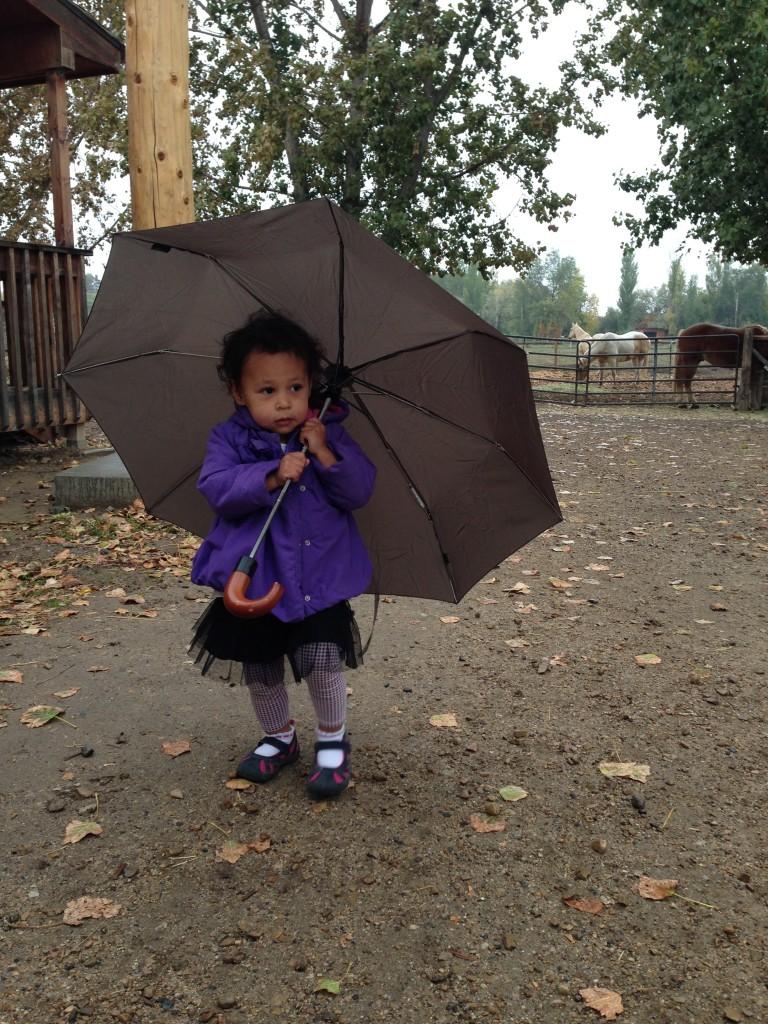 Diana on a rainy Sunday stroll...