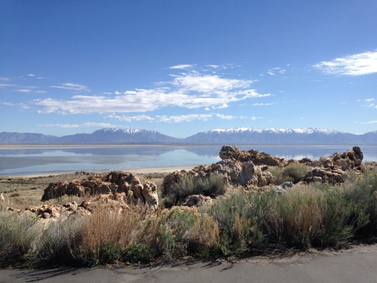 View of the Wasatch Mountains from Antelope Island...